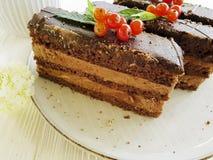 Czekoladowy tort, czerwony rodzynek, mennica, kwitnie śmietankowego biskwitowego smaku lata talerza na biały drewnianym Obrazy Stock