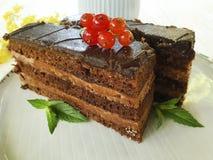 Czekoladowy tort, czerwony rodzynek, mennica, kwitnie domowej roboty smak porci smaku lata śmietankowego biskwitowego talerza na  Zdjęcia Royalty Free