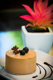 Czekoladowy tort z buleberry obrazy stock