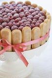 Czekoladowy tort z malinkami Obraz Stock