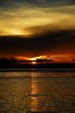 czekoladowy tropikalny słońca Obraz Stock