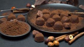 Czekoladowych trufli cukierki, czekolada kawa?ki i kakaowy proszek na zmroku, betonuj? t?o zbiory wideo