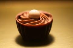czekolady Asortyment świetne zmroku, brown i białych czekolady, Zdjęcie Royalty Free