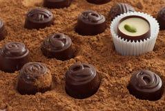 Czekolady na kakao proszek fotografia royalty free