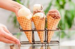 czekolady szyszkowa śmietanki lodu wanilia Obraz Stock