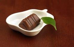 czekolady zielony liść kawałek Zdjęcie Royalty Free