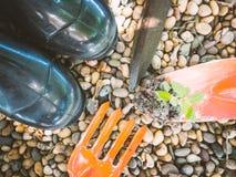 Czerń buty i mała młoda roślina na ogrodnictwie, rydla narzędzie z Zdjęcie Royalty Free