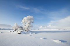 czerń marznąca loch góra Zdjęcie Stock