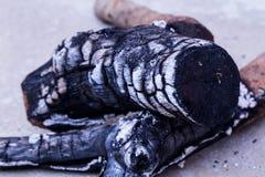 Czerń naturalny łupka węgla drzewnego tekstury tło, węgiel drzewny ja Zdjęcie Royalty Free