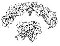 czerń opuszczać winogradu biel Obrazy Stock