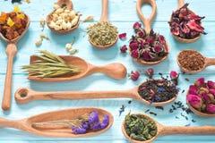 Czerń, owoc, chabrowa, poślubnik, dziki wzrastał, biały lotos i rooibos herbaciani w drewnianych łyżkach na błękitnym tle Zdjęcia Stock