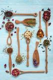 Czerń, owoc, chabrowa, poślubnik, dziki wzrastał, biały lotos i rooibos herbaciani w drewnianych łyżkach na błękitnym tle Obraz Royalty Free