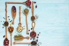 Czerń, owoc, chabrowa, poślubnik, dziki wzrastał, biały lotos i rooibos herbaciani w drewnianych łyżkach na błękitnym tle Zdjęcie Stock
