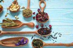 Czerń, owoc, chabrowa, poślubnik, dziki wzrastał, biały lotos i rooibos herbaciani w drewnianych łyżkach na błękitnym tle Obrazy Stock