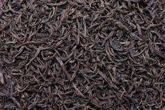 czerń suszący opuszczać herbaty Zdjęcia Stock