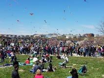 Czereśniowego okwitnięcia kani festiwal na national mall w Waszyngton, DC zdjęcia royalty free