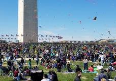Czereśniowego okwitnięcia kani festiwal na national mall w Waszyngton, DC zdjęcie stock