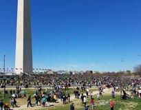 Czereśniowego okwitnięcia kani festiwal na national mall w Waszyngton, DC obraz royalty free