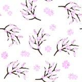 Czereśniowy okwitnięcie kwitnie tło Sakura menchia kwitnie tło ilustracji