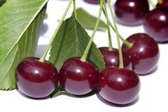 Czereśniowe jagody fotografia stock