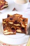 Czereśniowego cheesecake marmurkowaci punkty fotografia royalty free