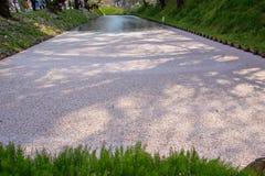 Czereśniowego okwitnięcia blizzardHanafubuki i wiśni carpetHanaikada przy zewnętrzną fosą Hirosaki park, Aomori, Tohoku, Japonia Fotografia Royalty Free