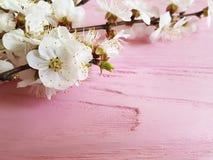 Czereśniowego okwitnięcia gałąź wystroju sezonu rocznika wiosna na różowym drewnianym tle zdjęcia stock