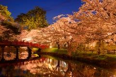 Czereśniowi okwitnięcia przy Hirosaki parkiem Fotografia Royalty Free