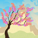Czereśniowi okwitnięcia Sakura przeciw tłu góry Zdjęcia Stock