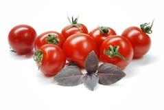 czereśniowi pomidory Obraz Royalty Free