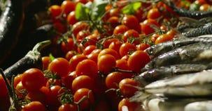 Czereśniowi pomidory zbiory wideo