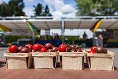 Czereśniowi pomidory dla sprzedaży w małych koszach przy rolnika rynkiem fotografia stock