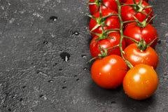 Czereśniowi pomidory na gałąź na ciemnym tle kosmos kopii Zdjęcie Stock