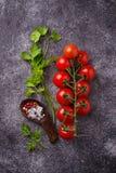 Czereśniowi pomidory, pietruszka i sól, obraz royalty free
