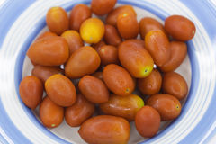 Czereśniowi pomidory umieszczający na talerzu Zdjęcia Royalty Free