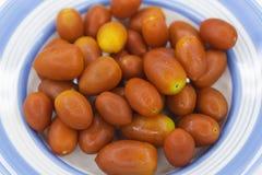 Czereśniowi pomidory umieszczający na talerzu Obrazy Royalty Free