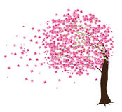 czereśniowy drzewo ilustracja wektor
