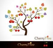 czereśniowy drzewo Obrazy Stock