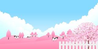 Czereśniowy ilustracyjny materiał ten imaged Japońska wiosna ilustracja wektor