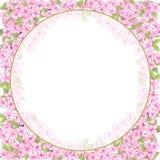 Czereśniowy okwitnięcie, Ślubny akwarela wianek, bukiety, Ramowy Kwiecisty, kwiatu przygotowania dekoruje, Wręcza, maluje ilustracja wektor