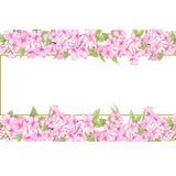 Czereśniowy okwitnięcie, Ślubny akwarela wianek, bukiety, Ramowy Kwiecisty, kwiatu przygotowania dekoruje, Wręcza, maluje ilustracji