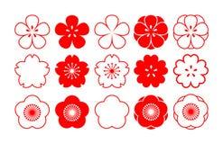 Czereśniowy okwitnięcie kwiaty odłogowania wektor ilustracji