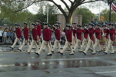 Czereśniowy okwitnięcie Parade15 Zdjęcie Stock