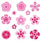 Czereśniowy okwitnięcie Sakura kwiaty ilustracja wektor