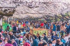 Czereśniowych okwitnięć festiwal w Ueno parku, Tokio, Japonia Obrazy Stock