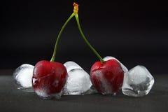 Czereśniowe jagody w lodzie Zdjęcia Stock