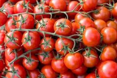 Czereśniowi pomidory na rynku obraz stock