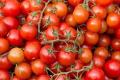 Czereśniowi pomidory na rynku zdjęcie stock