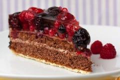 czereśniowy czekoladowy kremowego kulebiaka malinowy tarta Obraz Stock