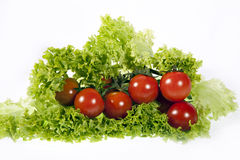 czereśniowy pomidor Fotografia Royalty Free